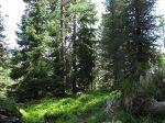 Vente terrain SAINT-LAUNEUC - Photo miniature 1